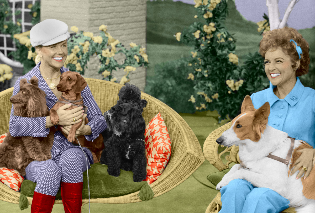 Doris Day with Tiger, Bubbles, Schatzi, and Muffy and Betty White with Daisy June
