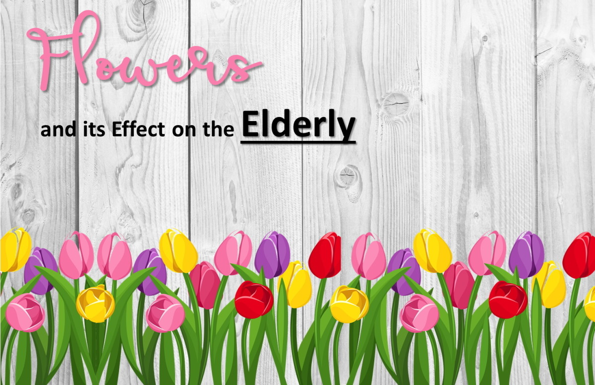 The Effect of Flowers On the Elderly