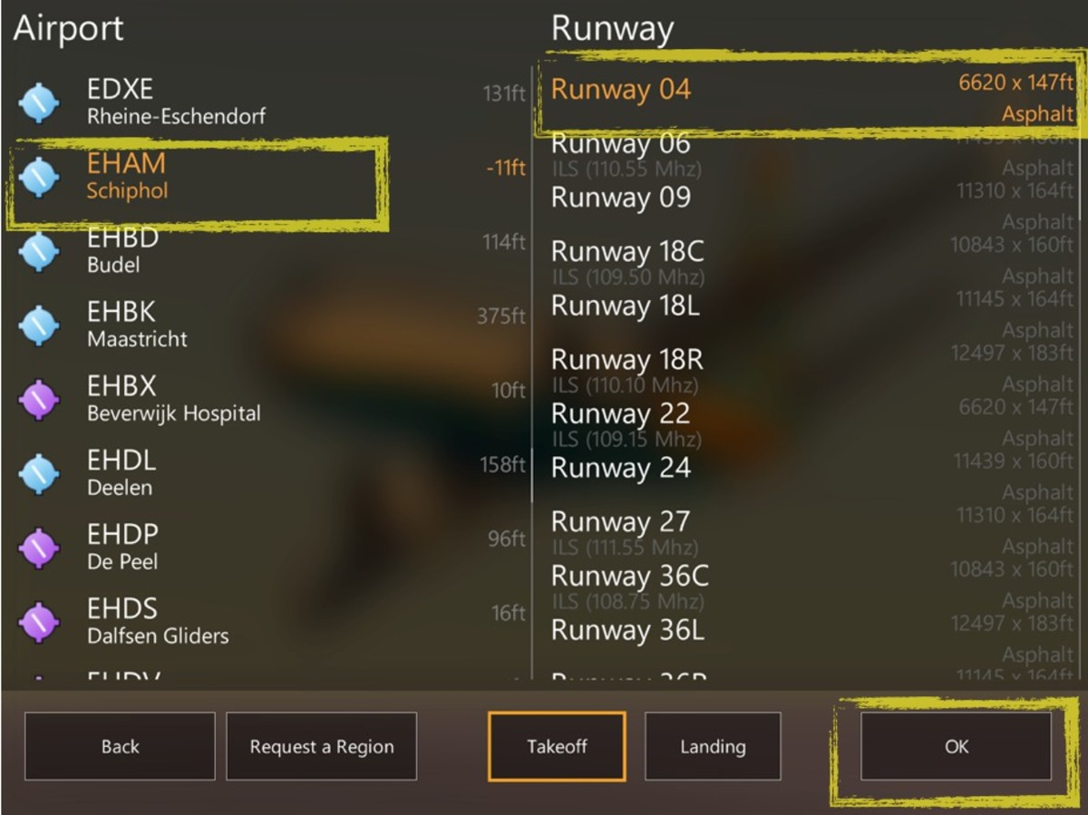 Pic 2: Airport and runway interface.
