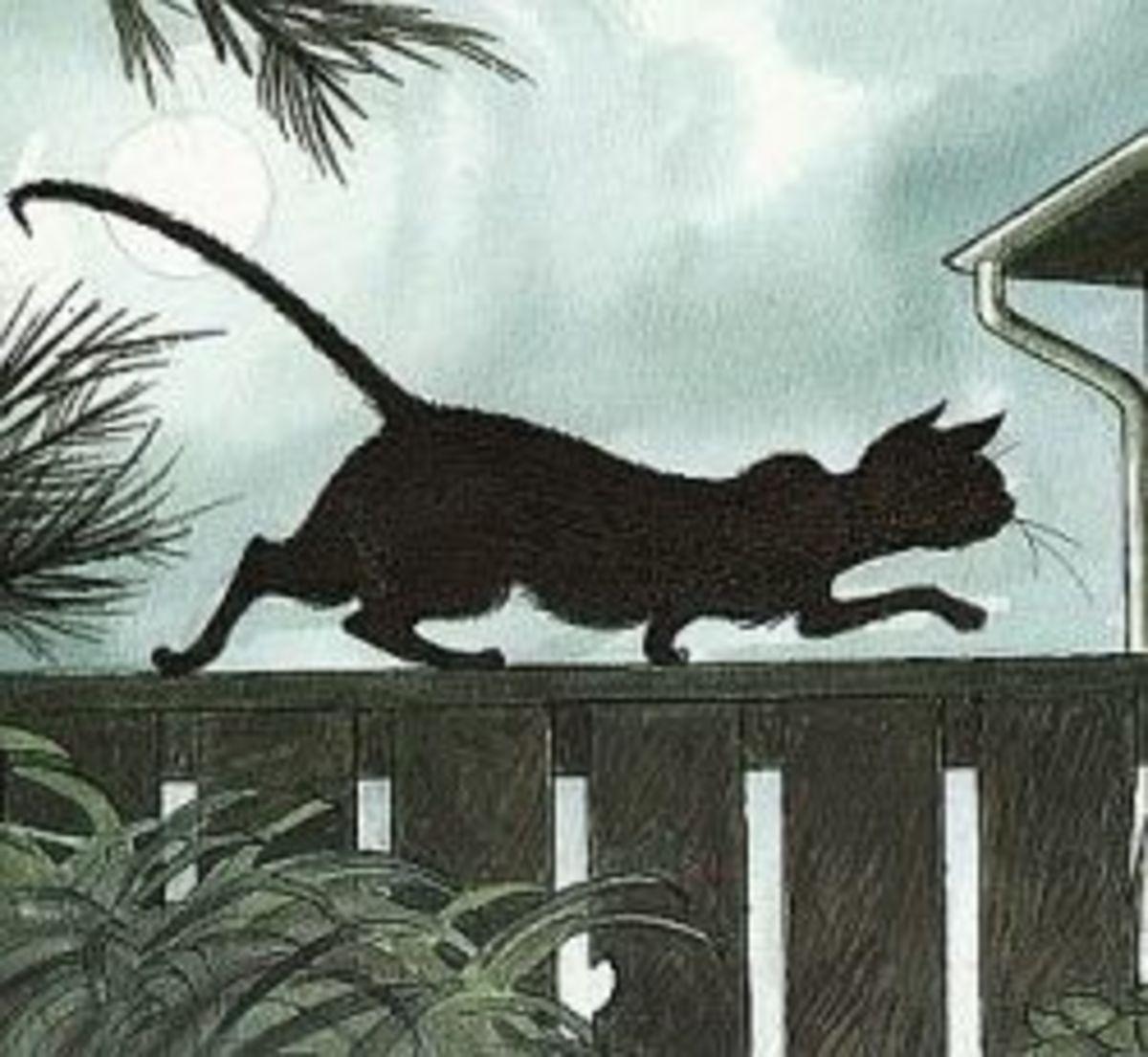 Slinky Malinki - Literary Cat