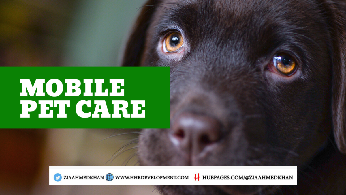 How to Start Mobile Pet Care Business and Online Shop