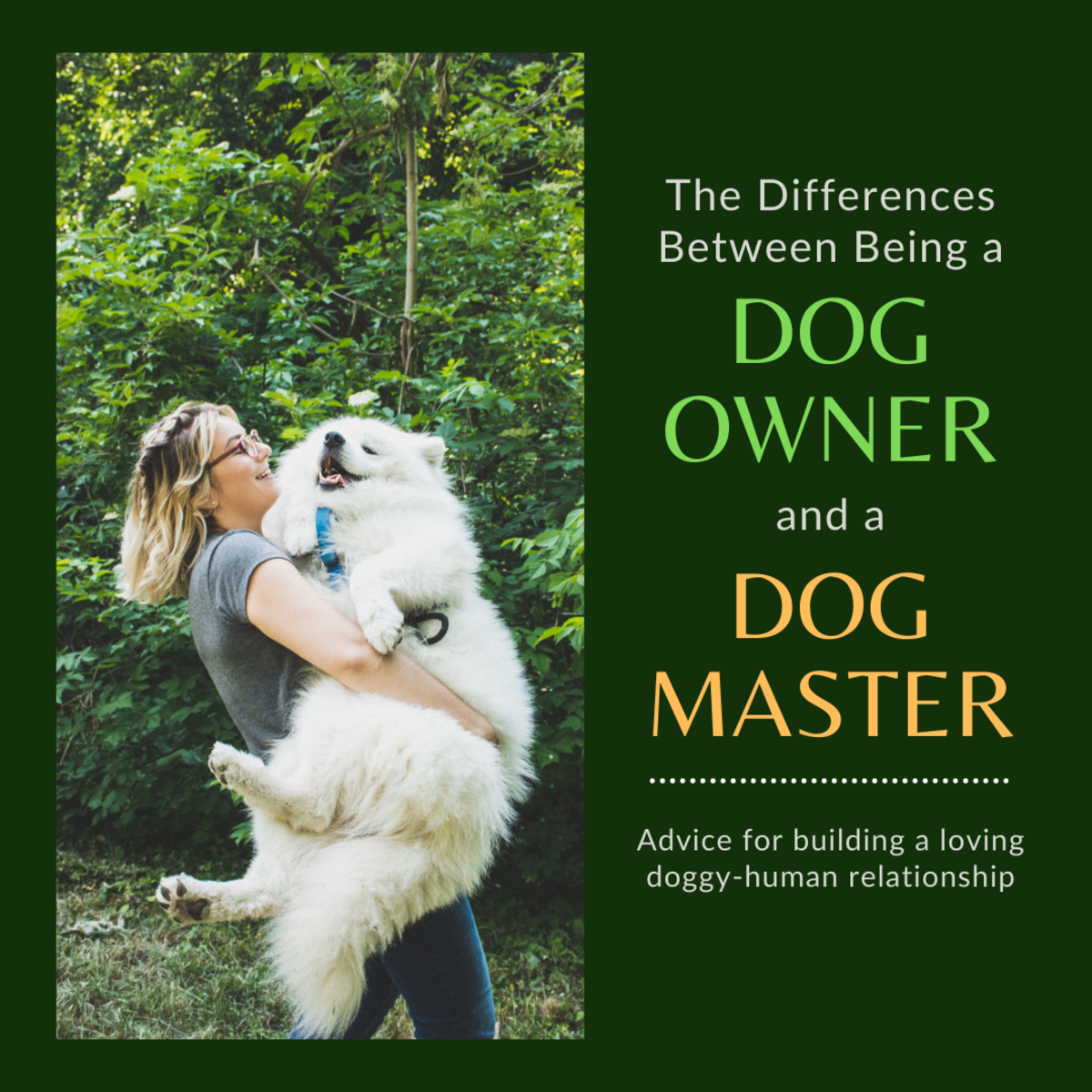 The Differences Between Being a Dog Owner and a Dog Master