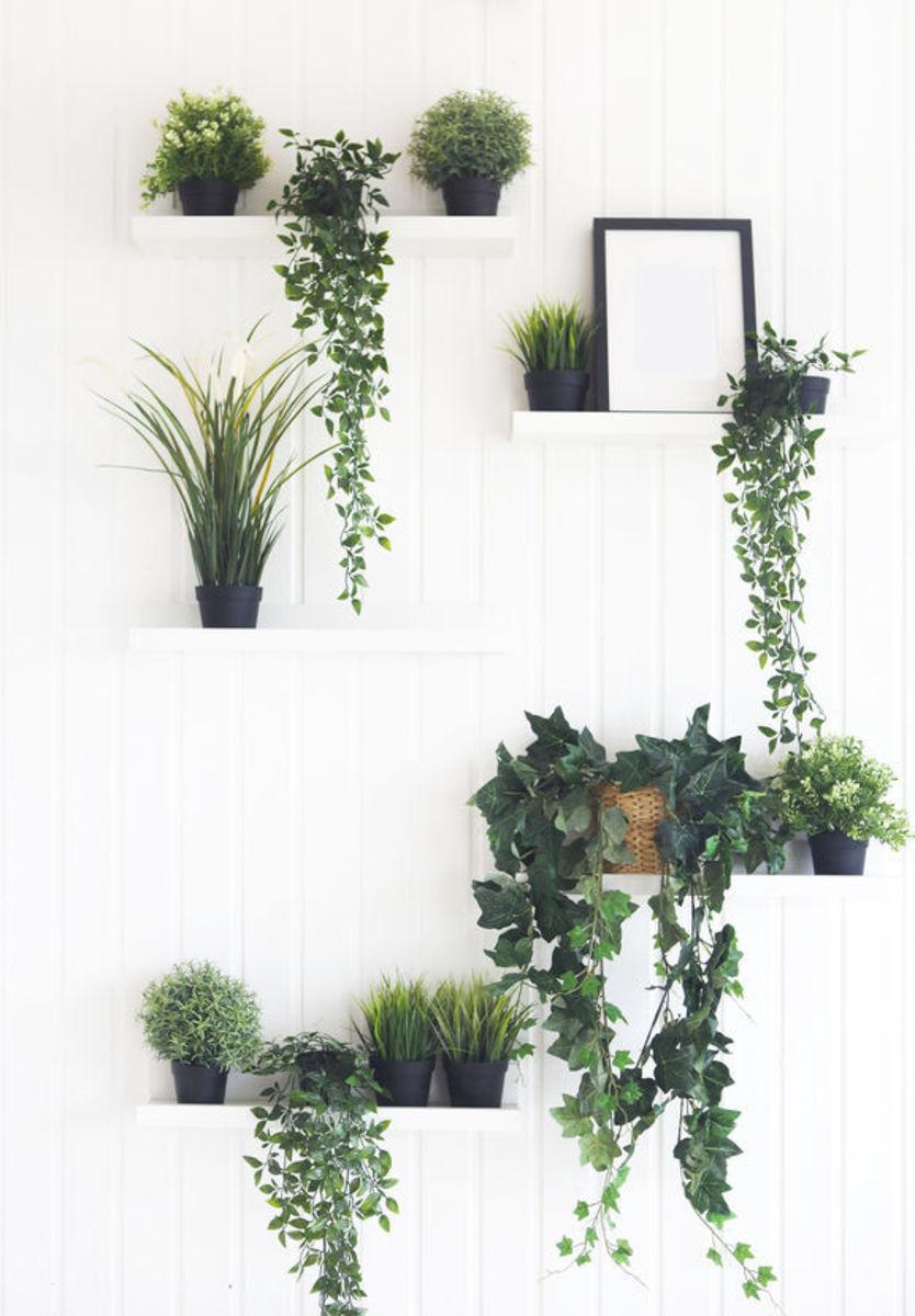 indoor-verticalgarden