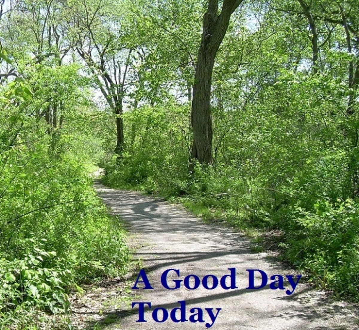 it-is-good-today
