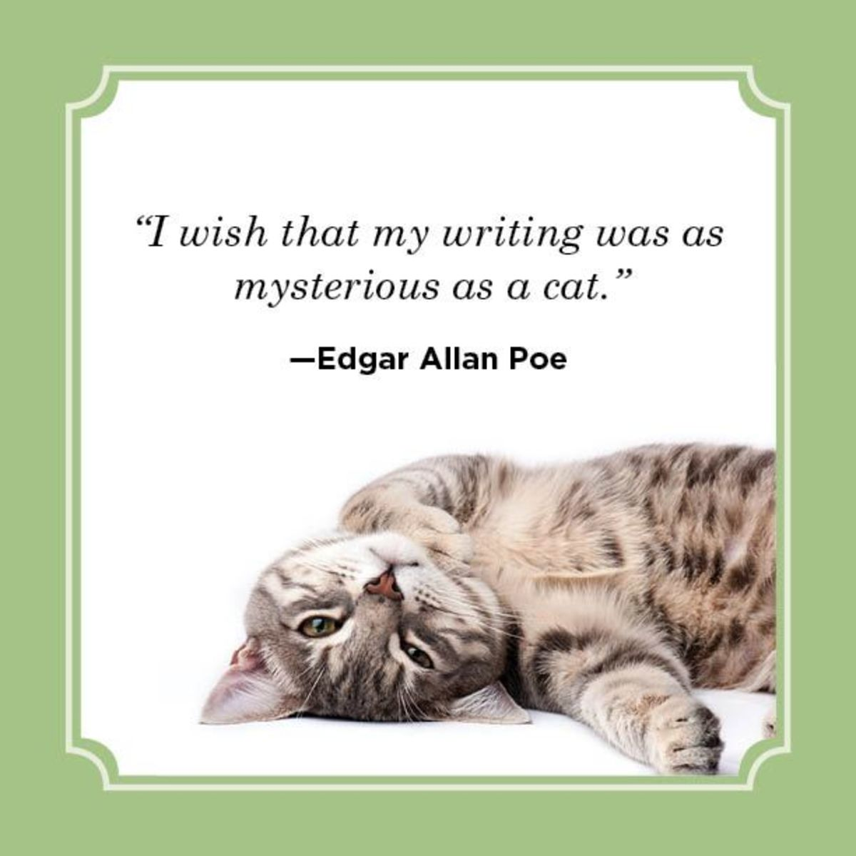 poem-kitty-cat-cartoon
