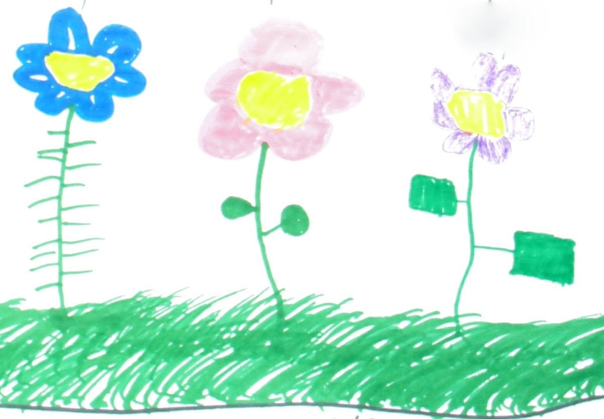 May flowers drawings