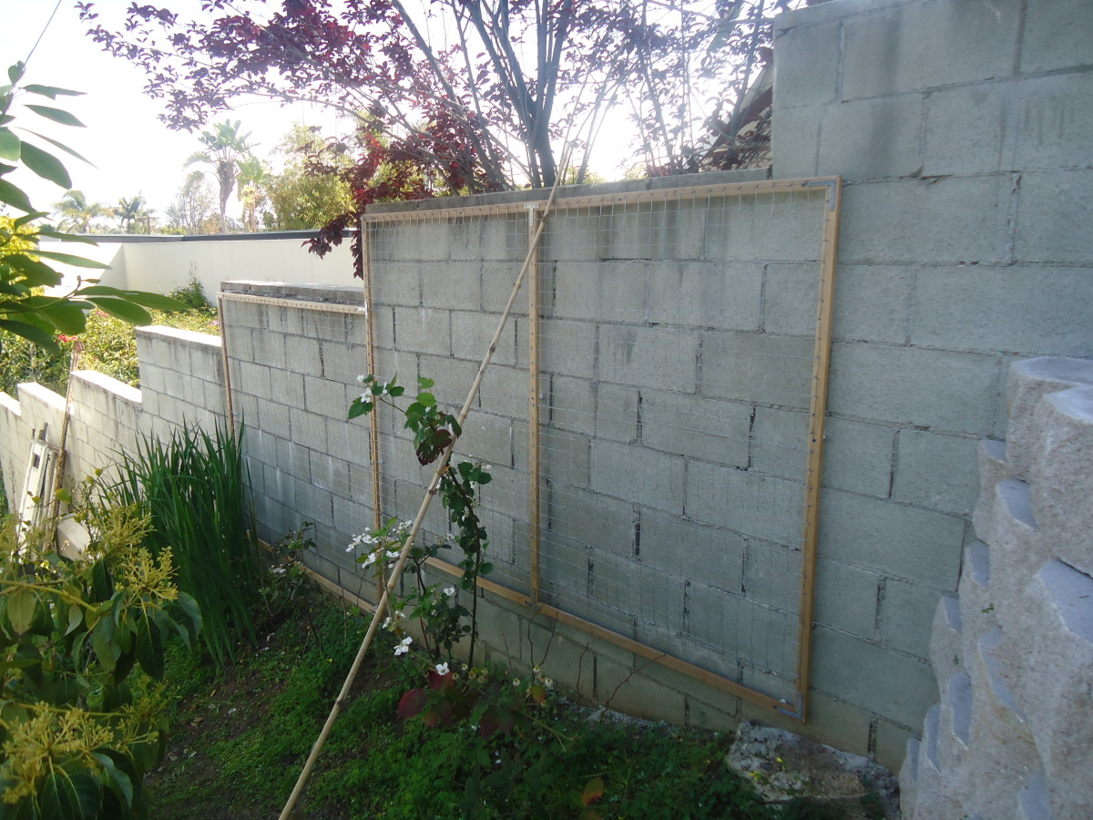 With careful planning, my husband designed the frame to contour the side wall.