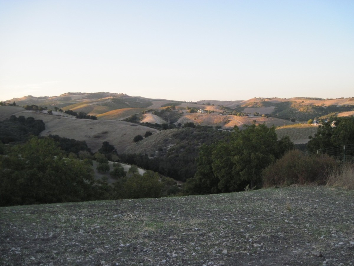 I took this picture from the summit of Kiler Canyon Road in Paso Robles