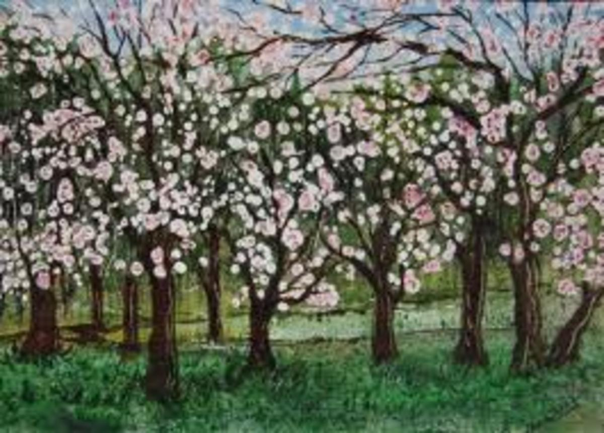In spring trees will flower, as soon as the days become longer and the temperature becomes warmer, all trees look wonderful when they are in flower and we all are happy to see these events.