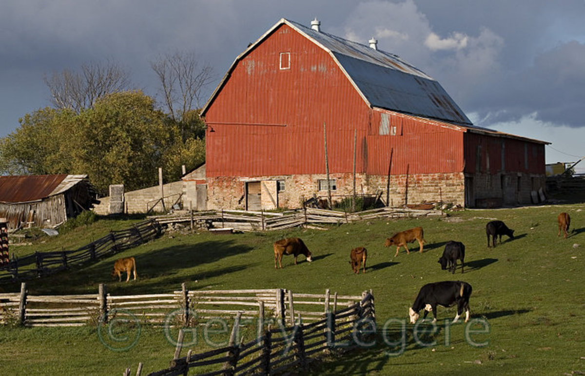 This picture shows a large farm house, but even though is is large it is still a lonely place to live your life. The  farms that I am talking about in my text are a lot smaller, but they are again lonely places.