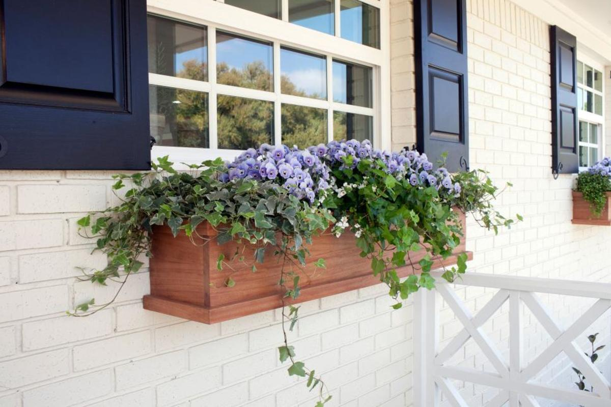 Combine flowering plants with attractive foliage in window boxes to add color on the window sashes.