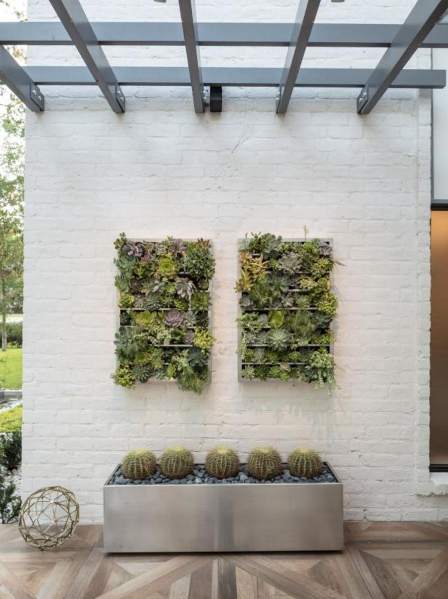 These green wall panels are great for any type of plants and the kind cactus.