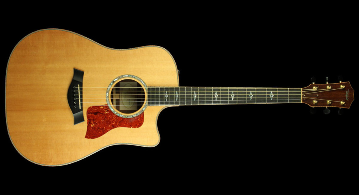The Taylor 810ce