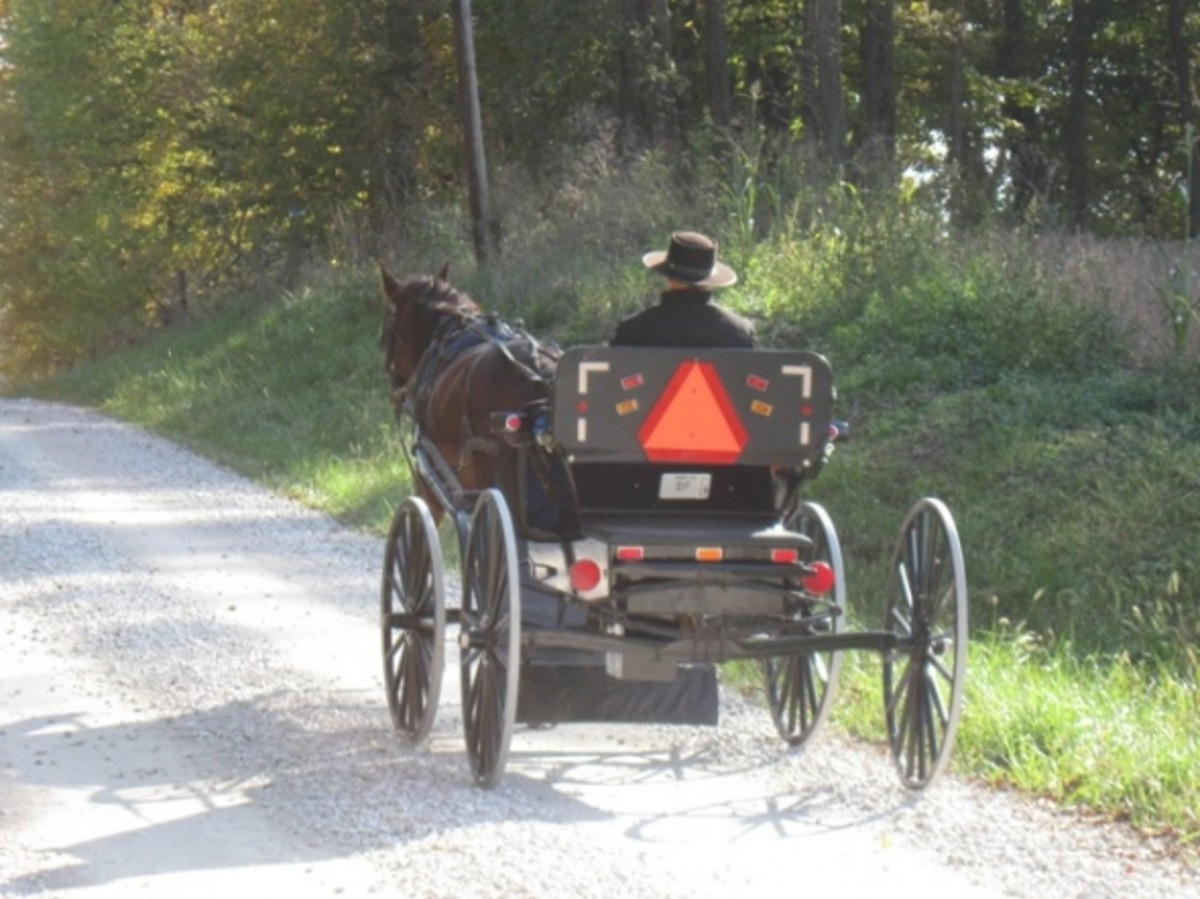 Many Amish families live in the area.