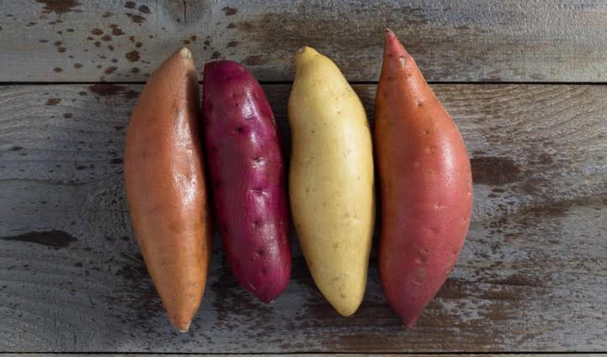 Sweet Potatoes to Improve Gut Health