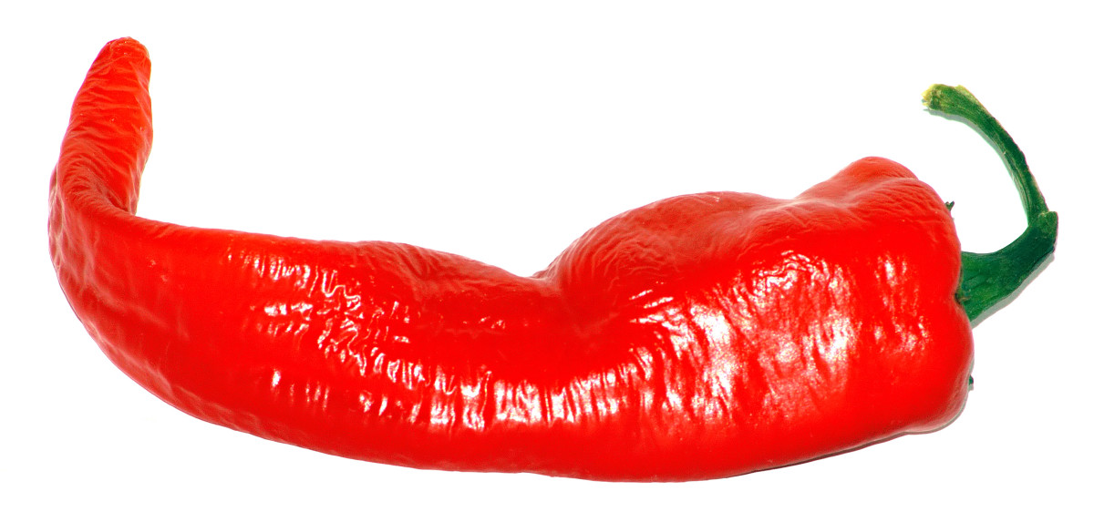 A Large Cayenne Pepper