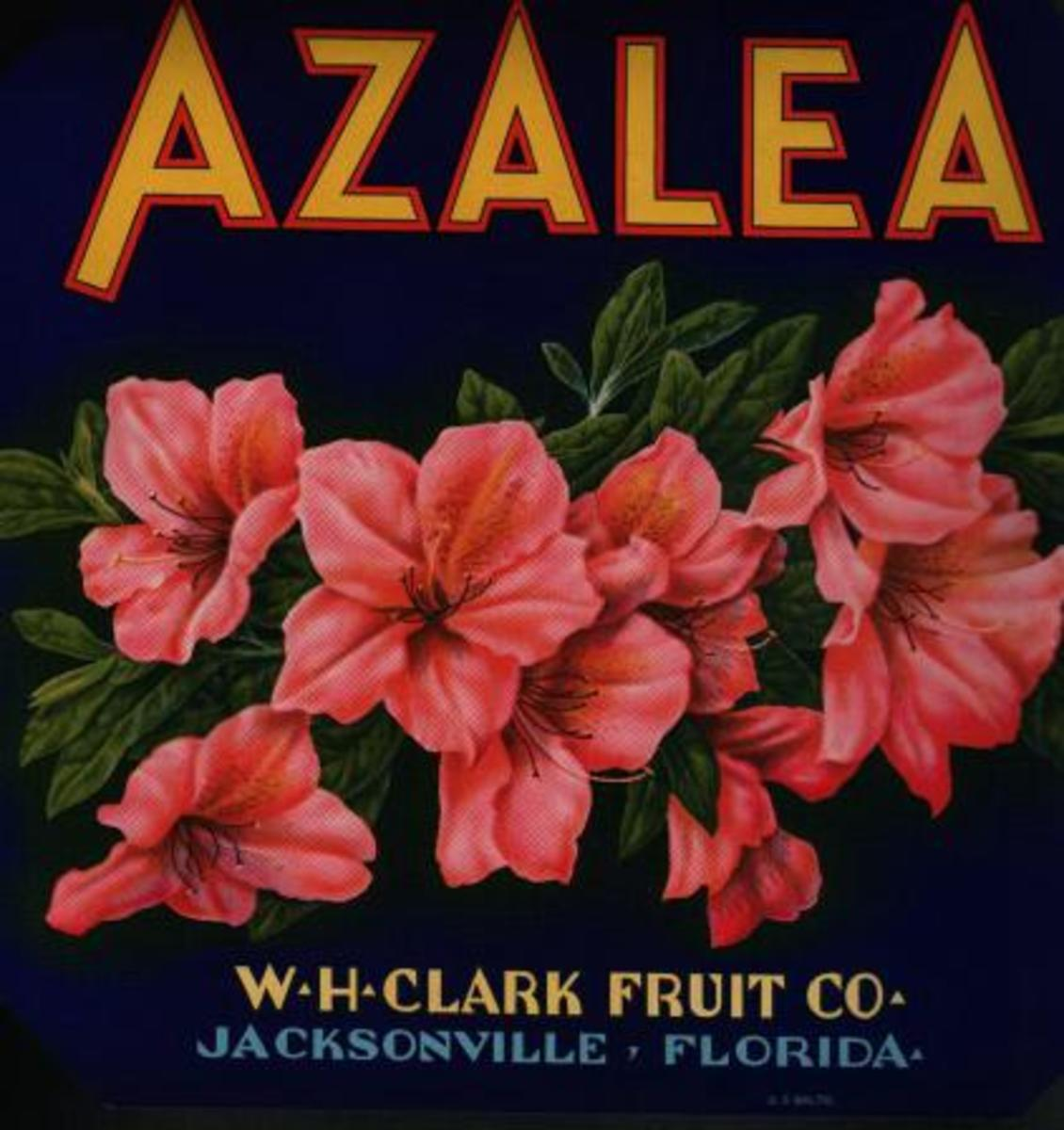 free cross stitch pattern Azalea label art