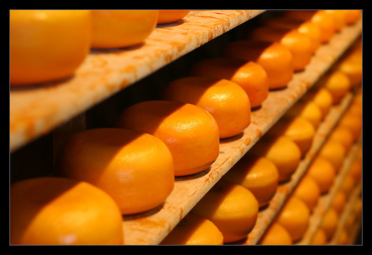 There are many types of cheese in the world, this photo is from a factory that has these wheels of cheese there to mature. Cheese is very yummy to eat in many ways and can be used to add to lots of food, as we all know.