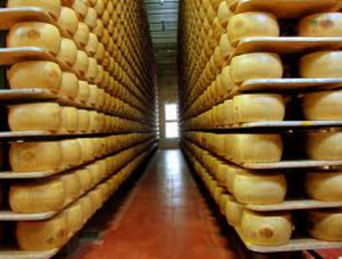 There are hundreds if not thousands of Parmigiano Reggiano wheels of beautiful cheese in this storage.