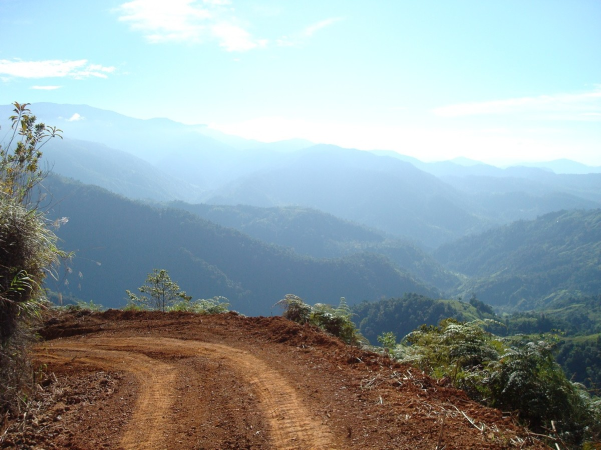 Mountain Road In Costa Rica