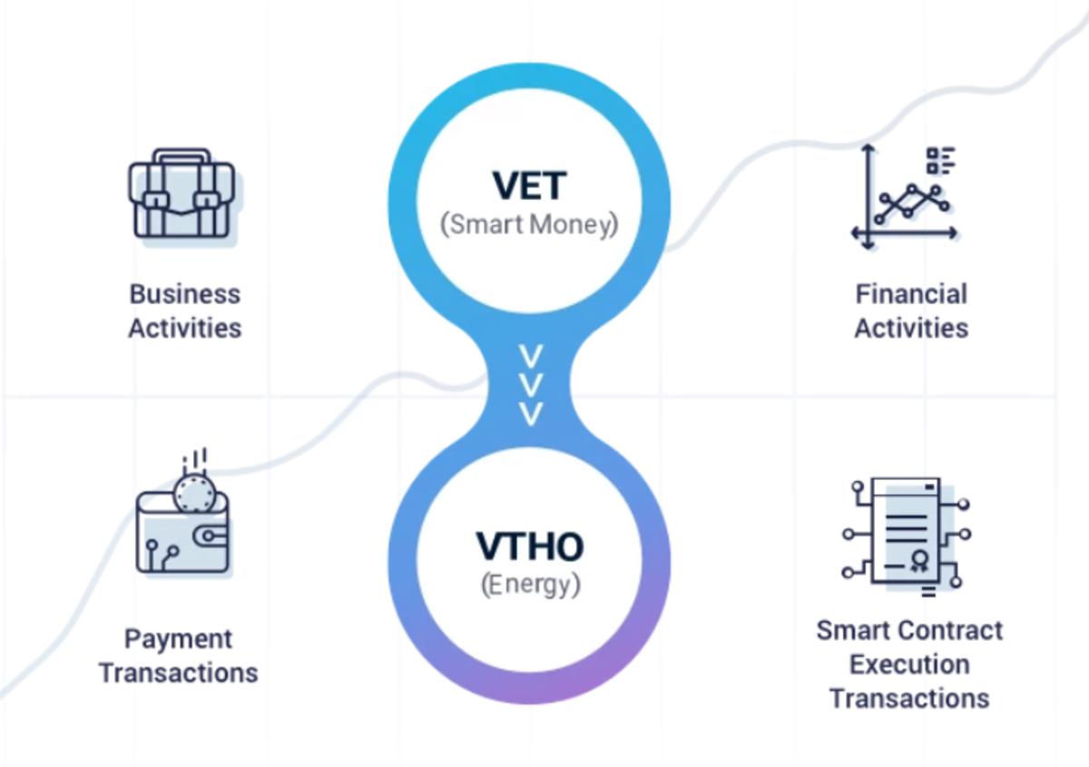 VET持有者自动获得VTHO。