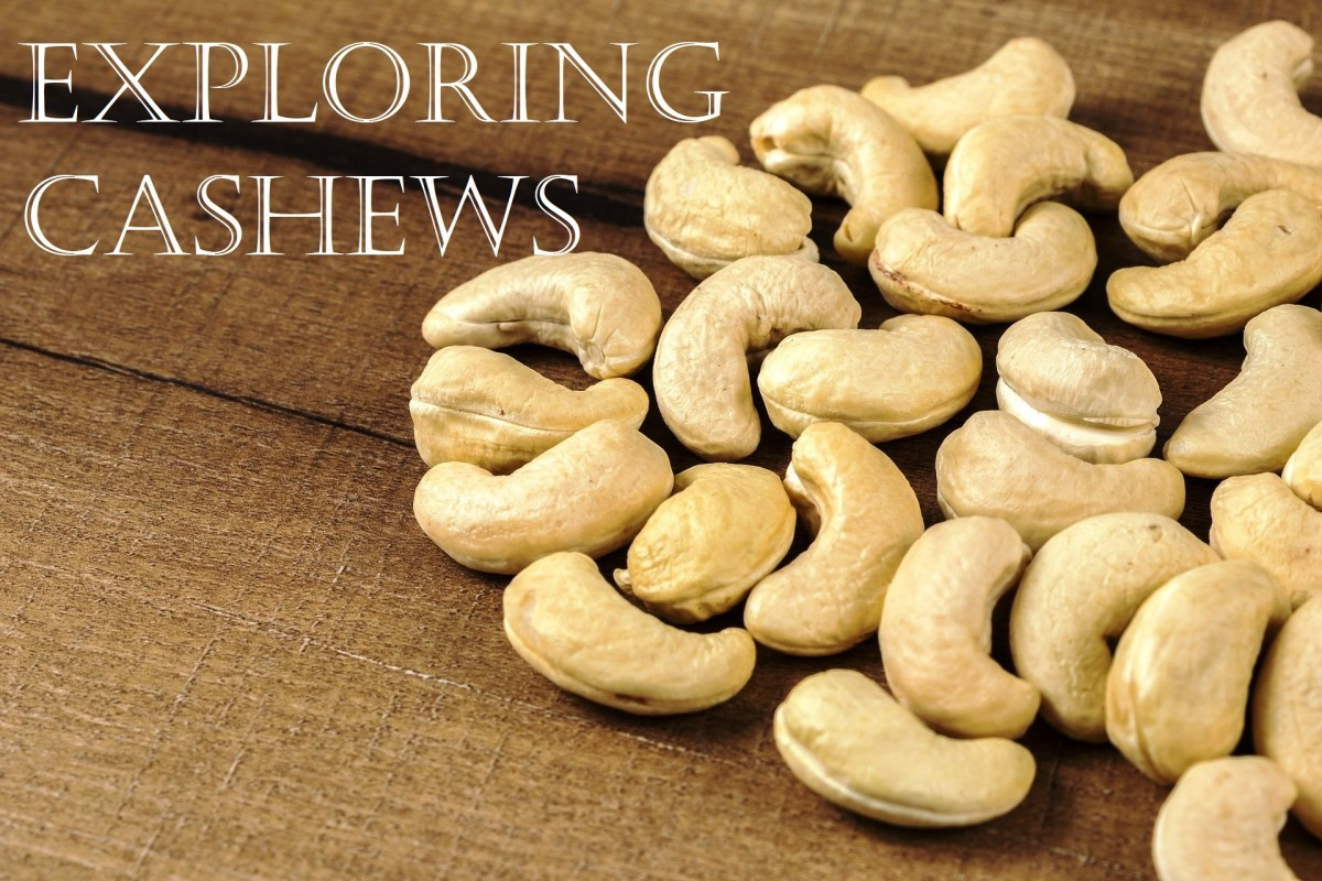 Exploring Cashews: Facts and 15 Fabulous Cooking and Baking Recipes