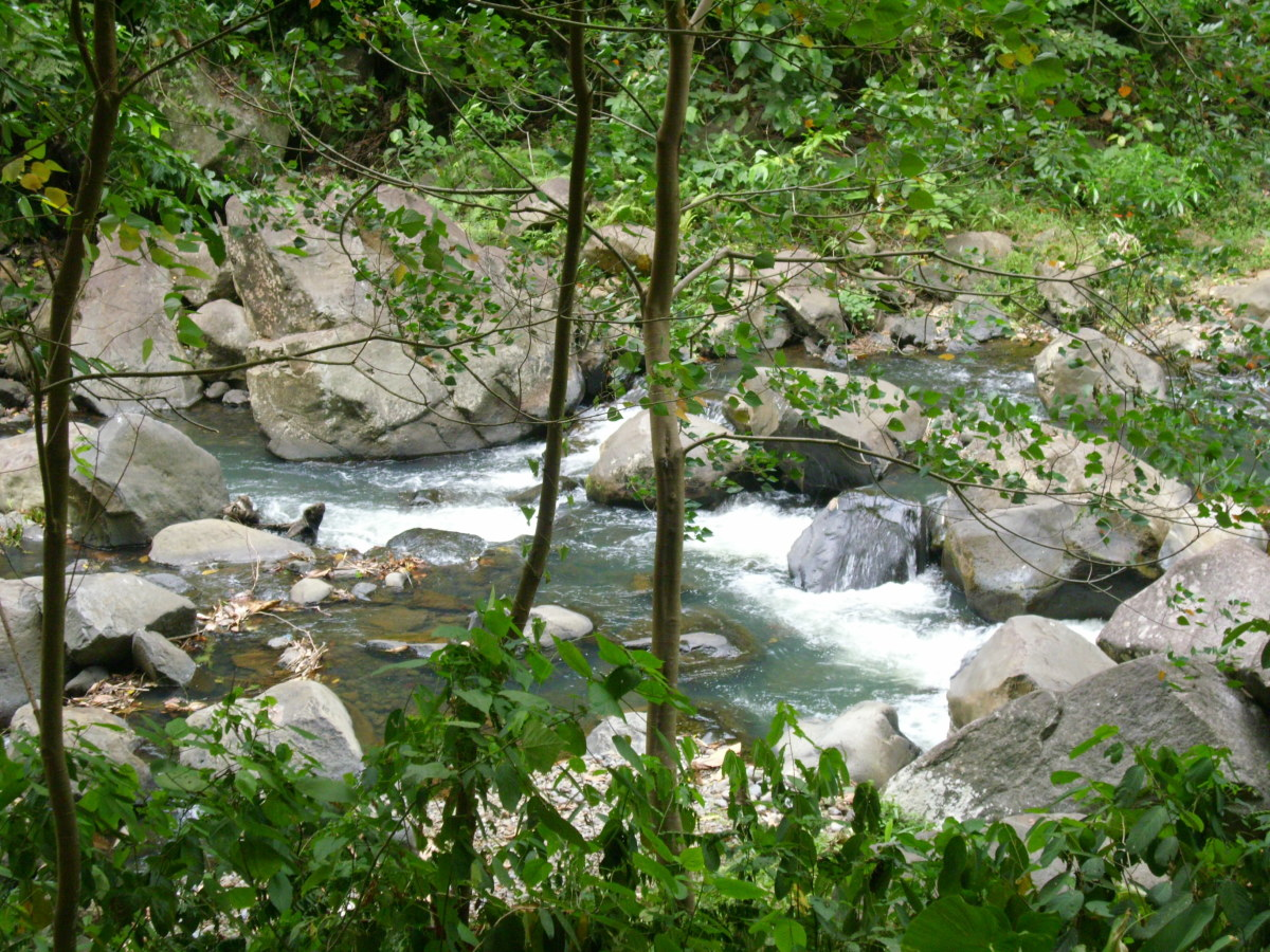 View from the bridge of Tiklas Falls Resort.