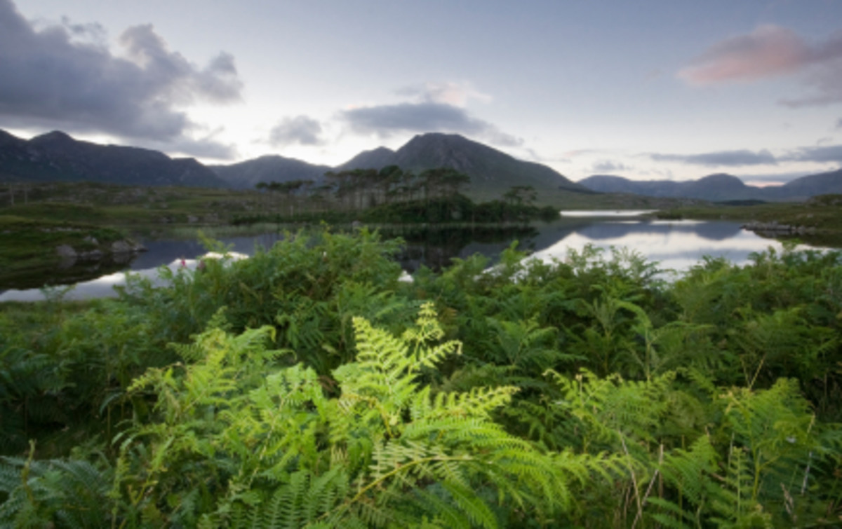 A quiet corner of Connemara, part of the once great kingdom of Connacht