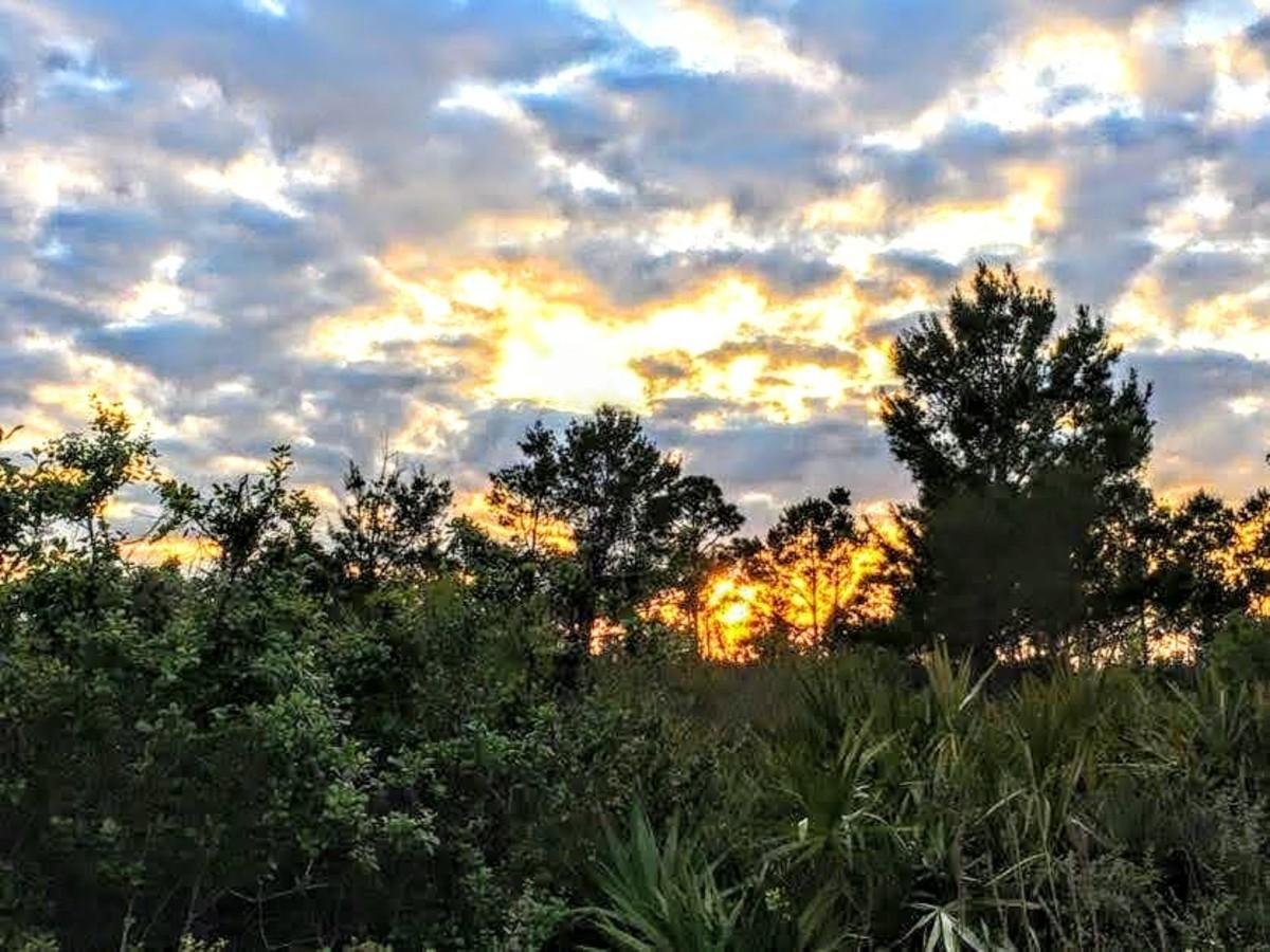 Jonathan Dickinson State Park, Hobe Sound, Florida
