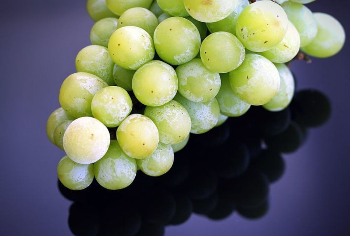 Frozen grapes can be used in fabulous recipes all year long!