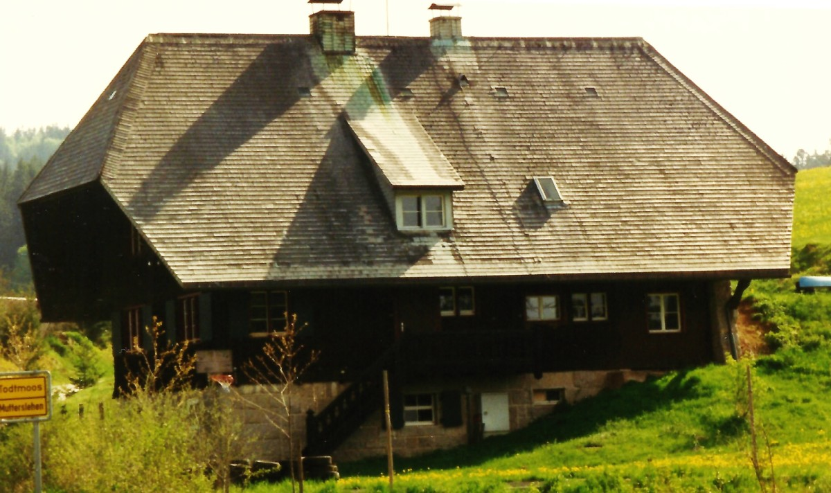 Typical roofs on houses in the Black Forest areas of Germany