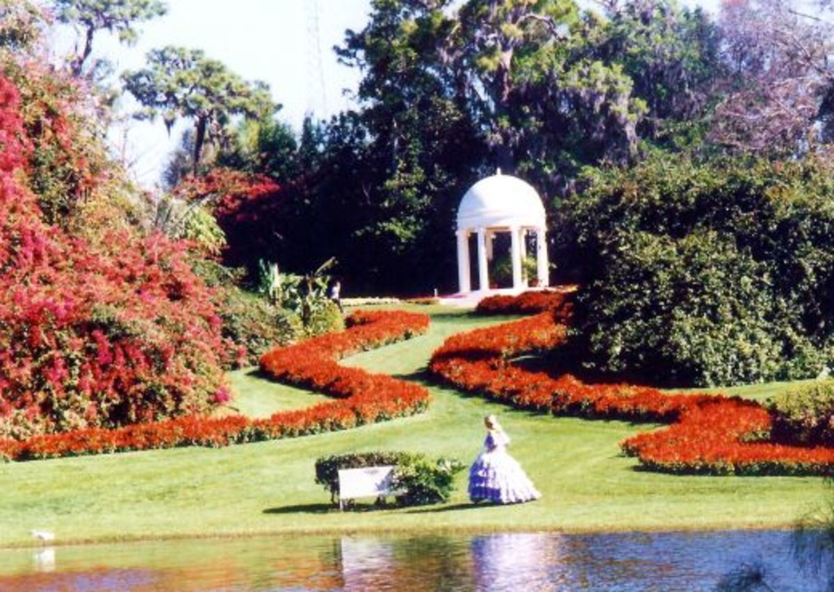 The beautiful Cypress Gardens