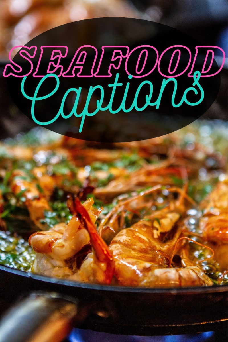 Seafood Quotes and Caption Ideas