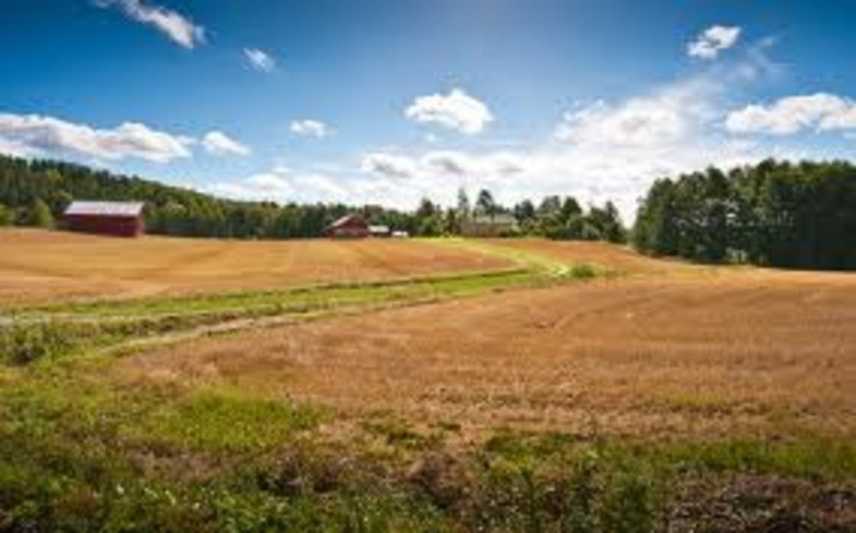 Farms are very lonely places, it might be okay to live there for a few days, when one wants some peace and quiet; but it is not the right environment for very young men, specially if those young men need to change work later during their life.