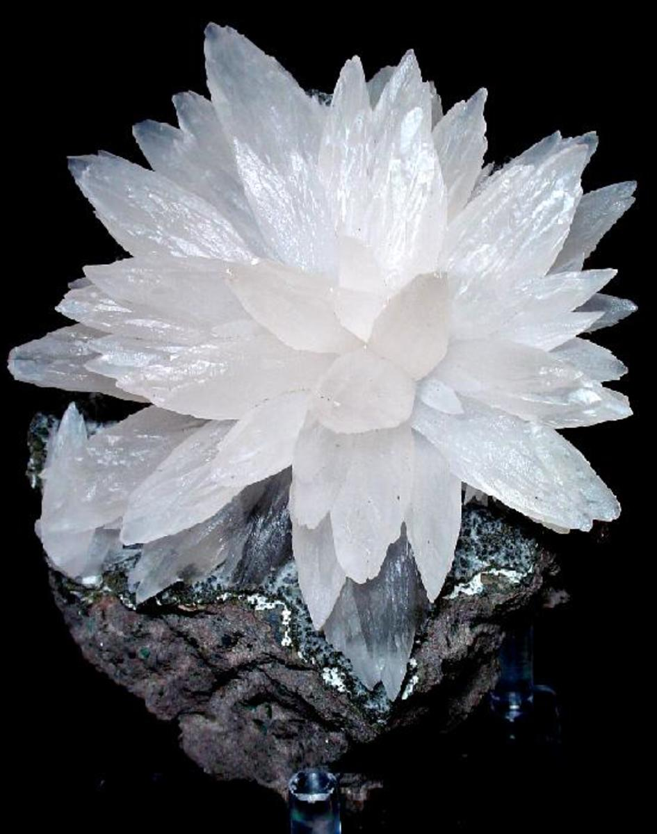 A magnificent spray of white calcite, mined in Brazil.