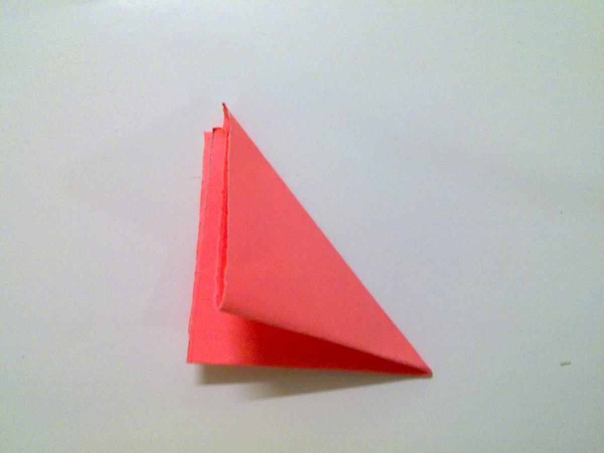Fold half again, from top right to bottom left, forming a triangle