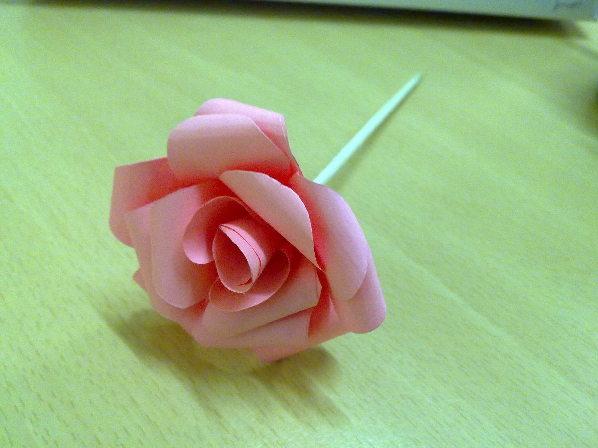 Paper Rose Flower with stem