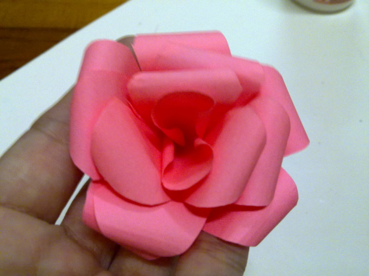 Insert each petals in the middle