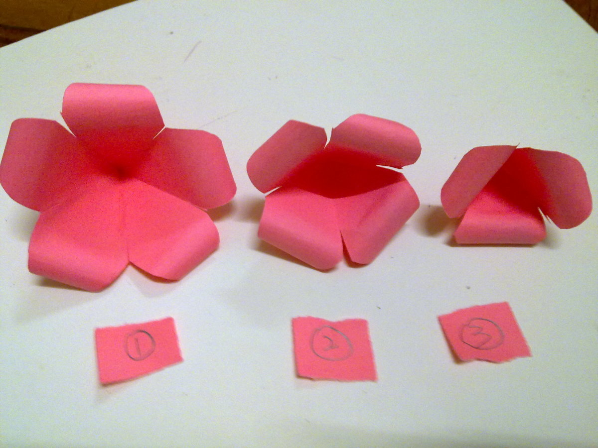 3 paper flowers with curled petals.  No1 is the biggest flower, No 2 is the medium flower and No. 3 is the smallest flower