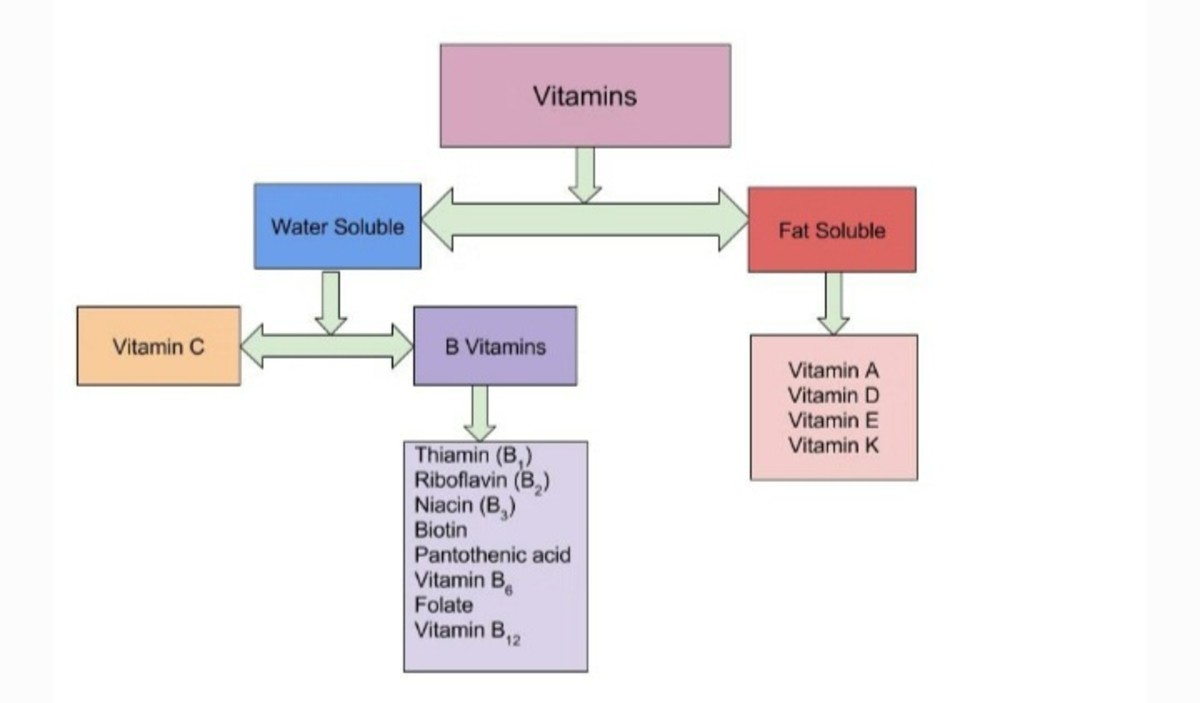 Full Description of Vitamins