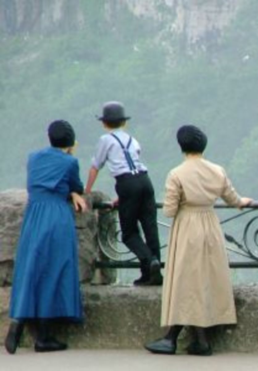 Amish Fiction Book Authors and Their Books
