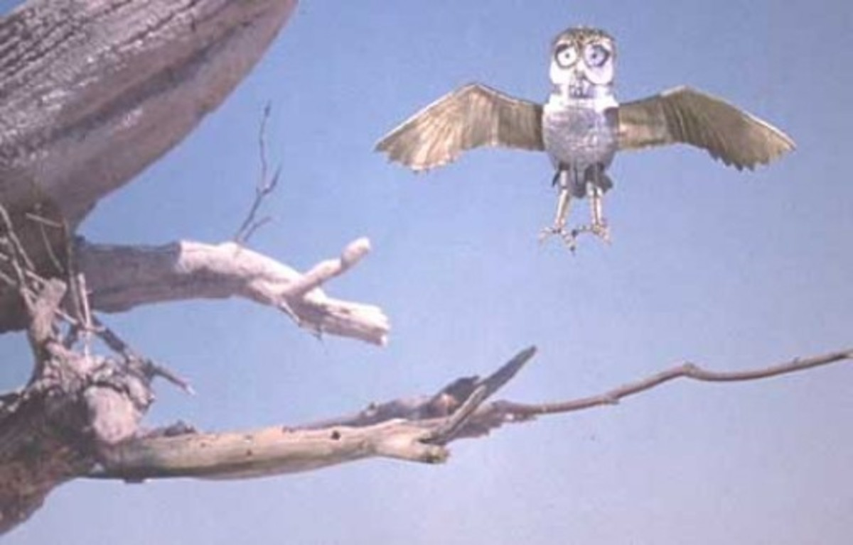 Bubo in flight