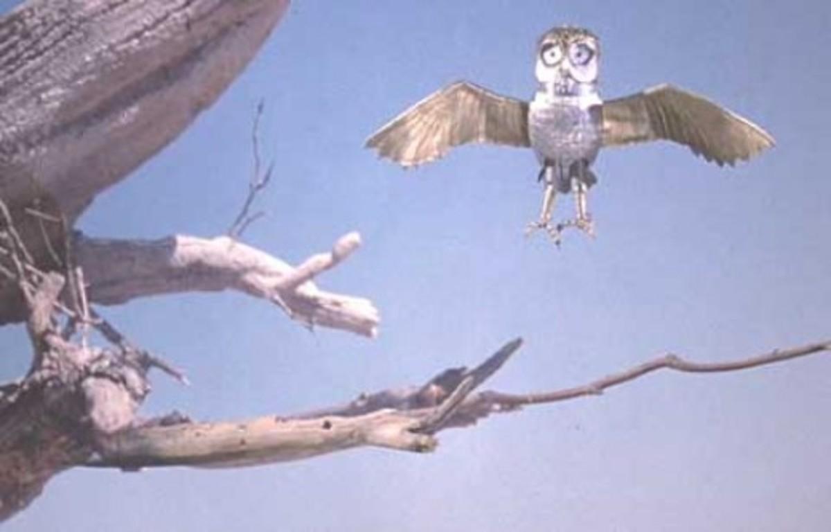 Bubo in flight