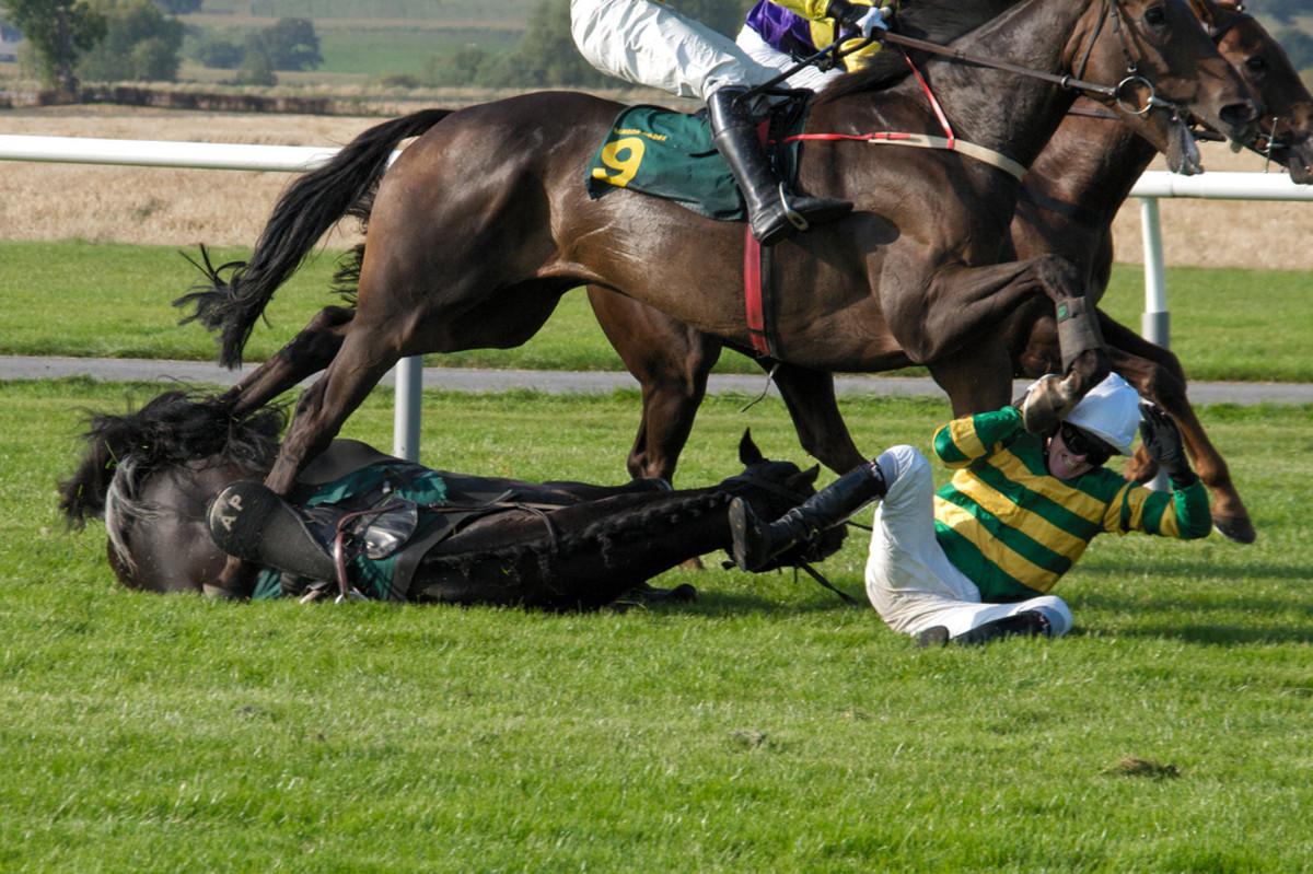 Jockey A.P. McCoy falls during race