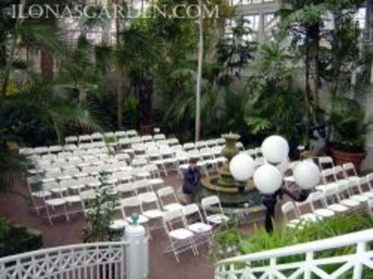 Wedding in the Franklin Park conservatory