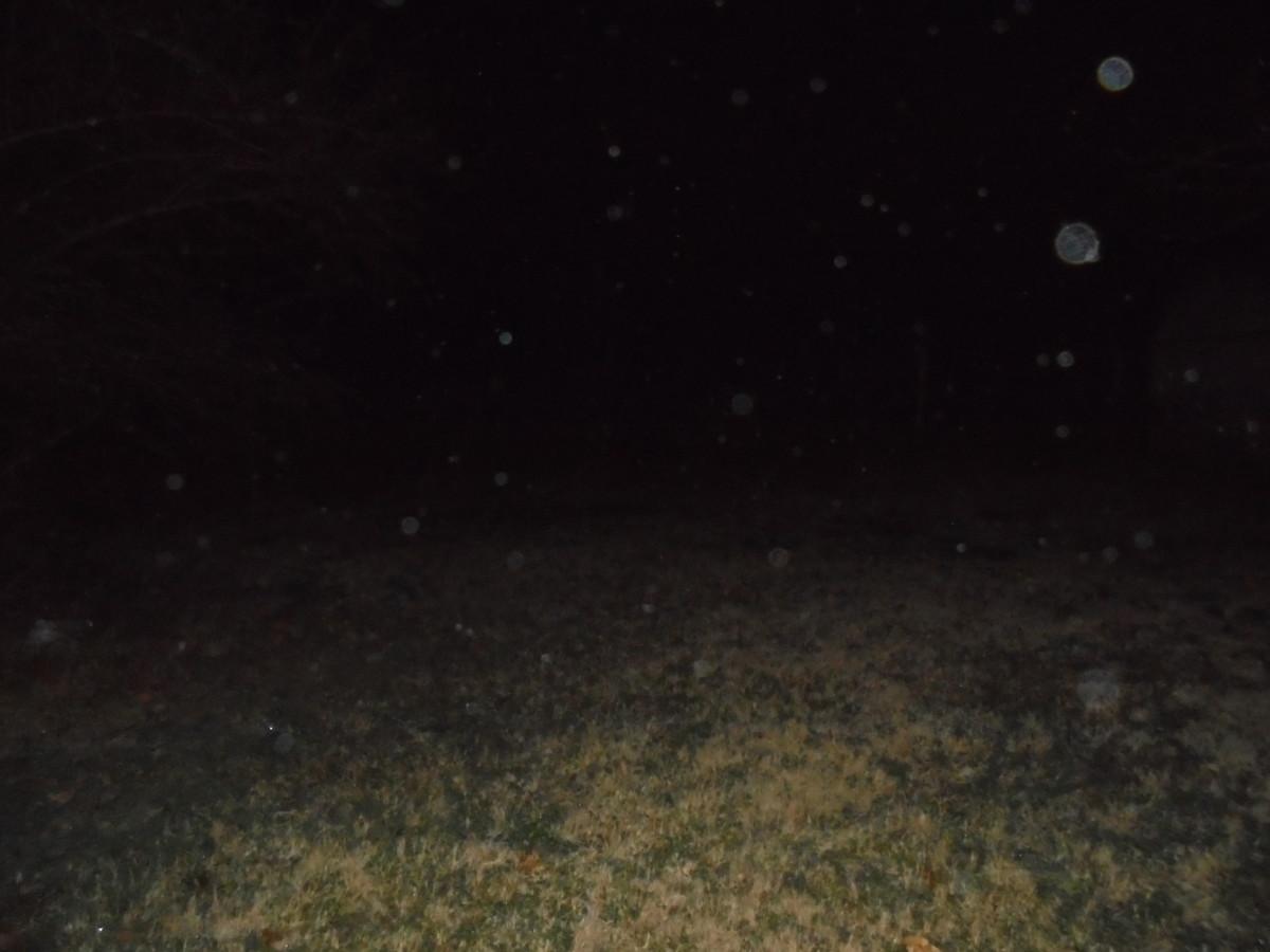 Orbs on my Farm!