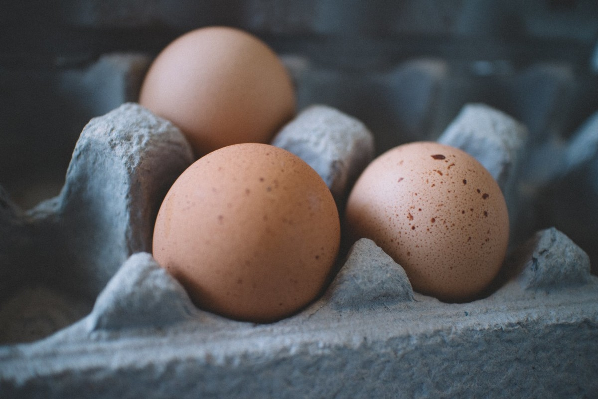 Ever Tire of Mistreating Egg Shells?