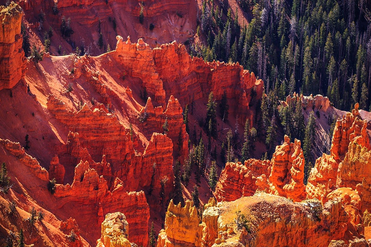 Autumn colours in SW Utah...Cedar Breaks National Monument..from the 10,460 foot rim
