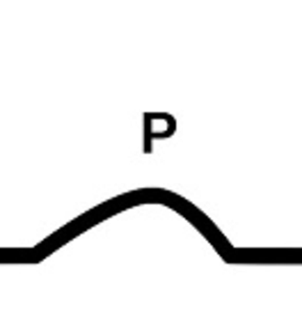 P wave EKG