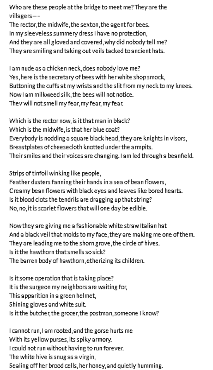 analysis-of-poem-the-bee-meeting-by-sylvia-plath